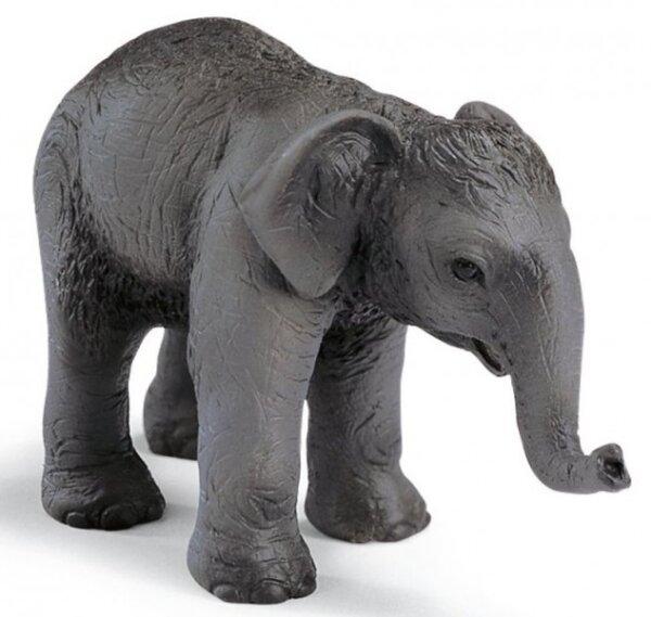 Schleich 14343 Asiatisches Elefantenbaby